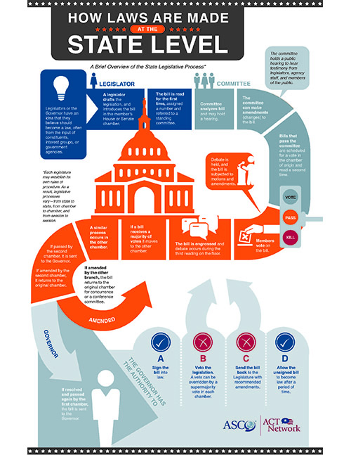 state legistlative process infographic